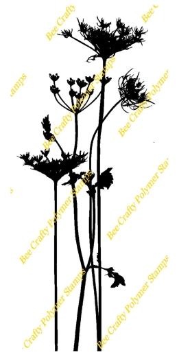 beautanicals-wildflower-2